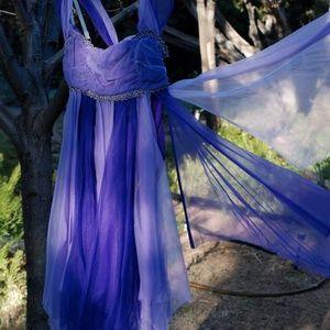 Edwardian Fairy Costume